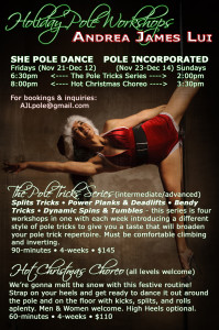 AJL Pole Holiday Workshops - AJL